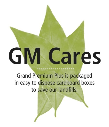 GM_CARES logo_masked