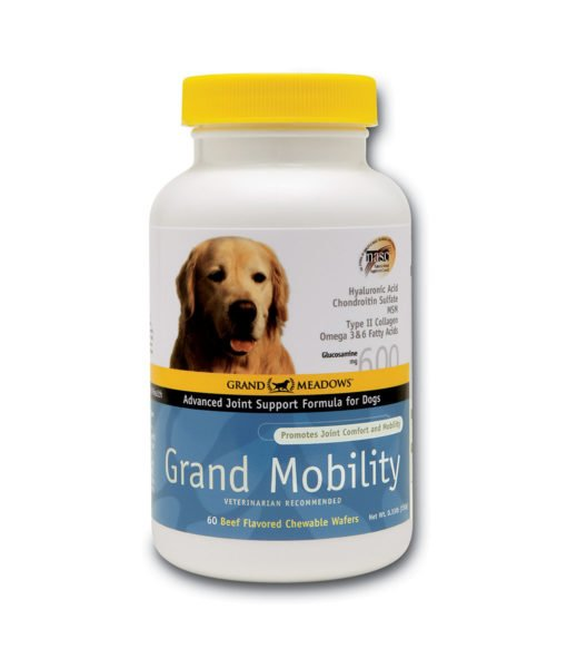 GM_GrandMobilityDogs_WEB