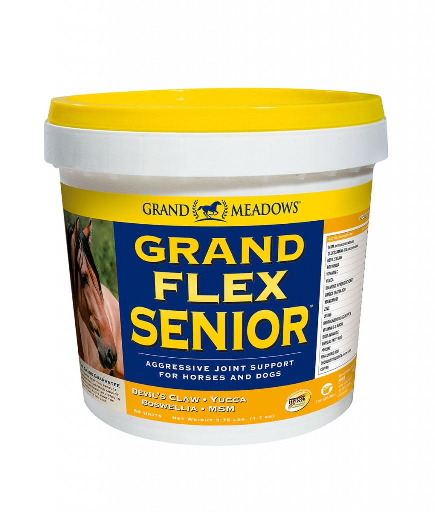 Senior Horse Joint Supplements