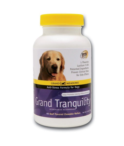 GM_GrandTranquilityDogs_WEB