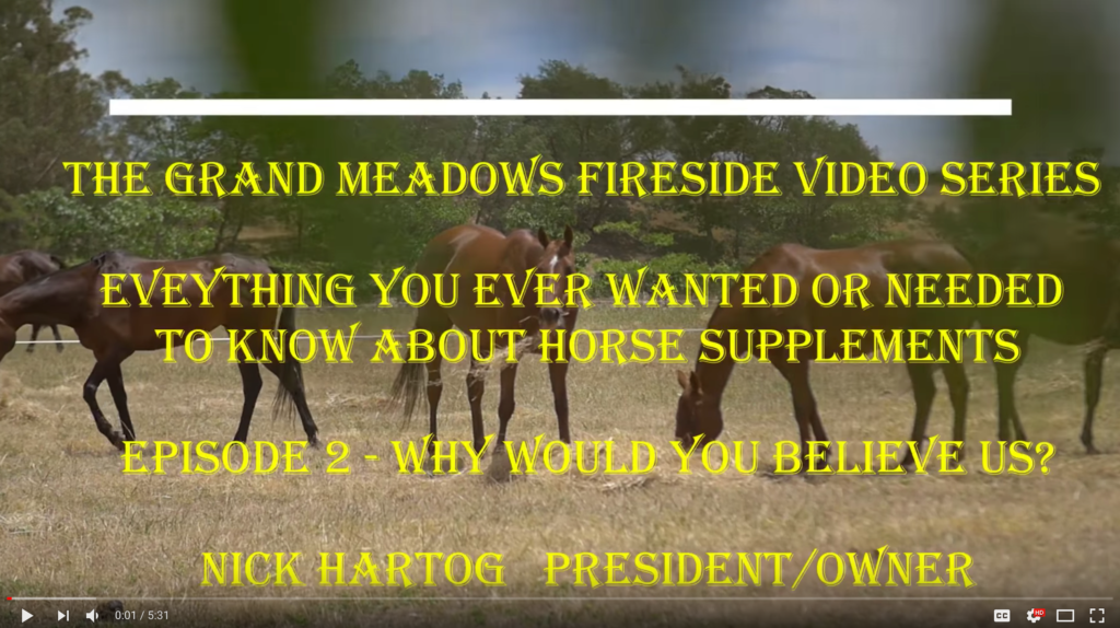 Fireside Chat Video 2 - Why Believe Grand Meadows