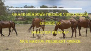 Grand Meadows Fireside Chat - Episode 11 - Digestion Wrap Up