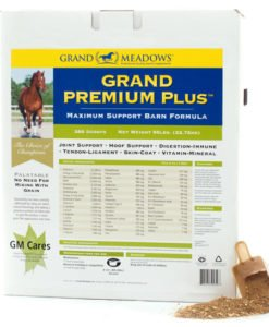grand-meadows-grand-premium-plus-package