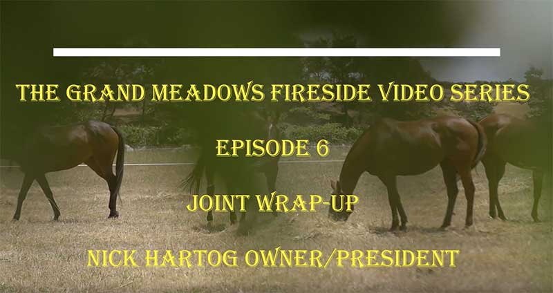 Fireside Chat Episode 6 - Horse Joint Supplement Wrap-Up