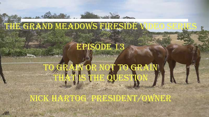 Grand Meadows Fireside Chat 13 - To Grain or Not To Grain